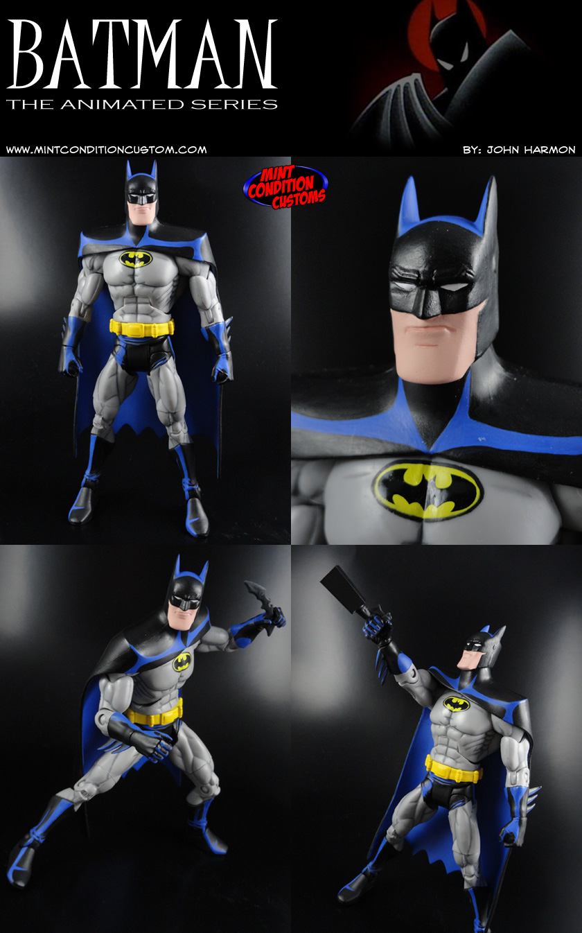 "Custom Batman The Animated Series Style 6"" DC Universe Action Figure"