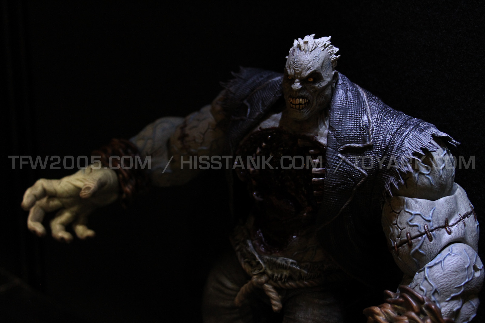 DC Collectibles Arkham City Solomon Grundy Deluxe Action Figure Toy Fair 2013